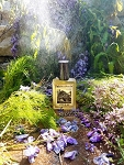 AFTER THE RAIN EAU DE PARFUM (EDP) 60 ml Perfume Spray -  Lilac, Wisteria, Blue Lotus, Rain, Green Accord, Wild Violets, Earth